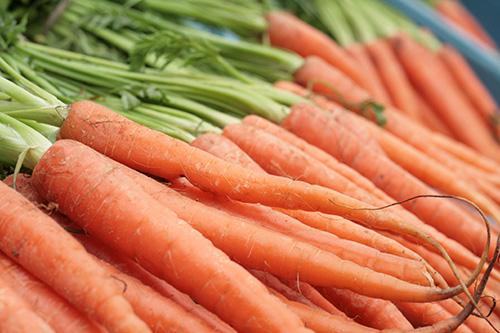 ¿Porqué las zanahorias son naranjas?